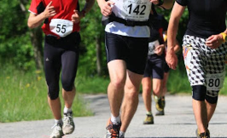 Trail Saison 2009: combien de dents sur le peigne?
