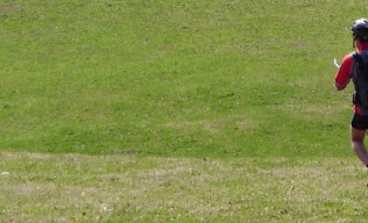 Avril, la grosse peignée
