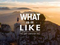 What is it like #3 : Les derniers jours d'automne