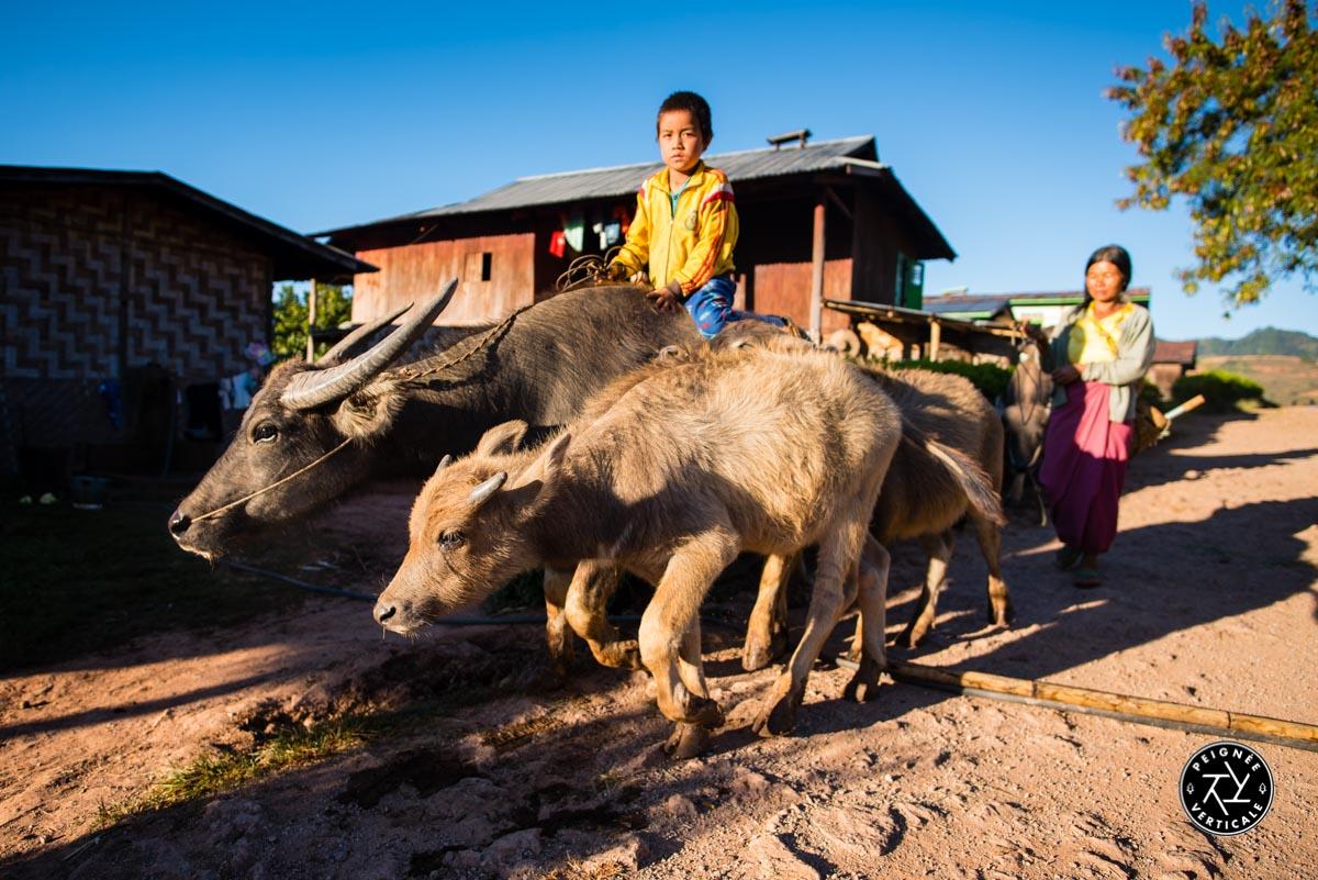 Birmanie-Trek-Kalaw-Lac-Inle-4760