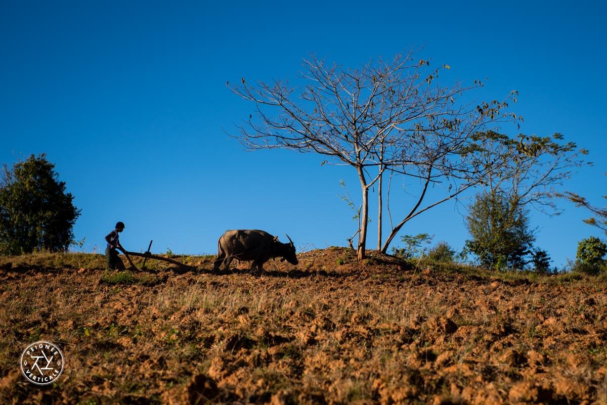 Birmanie-Trek-Kalaw-Lac-Inle-4859