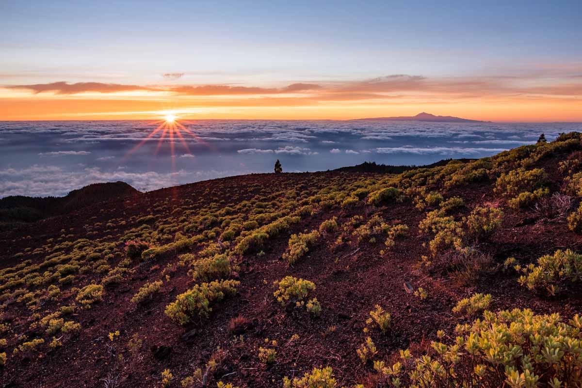 Pico Birigoyo - La Palma - Canaries