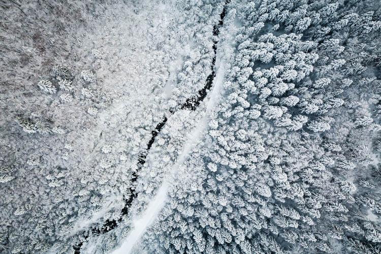 Vue aérienne sur une forêt après une tempête de neige, Massif des Bauges, France. Format paysage.