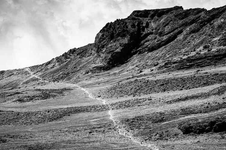 Chemin de trek s'étalant à perte de vue avant l'assaut final du Kilimanjaro, Tanzanie. Format paysage.