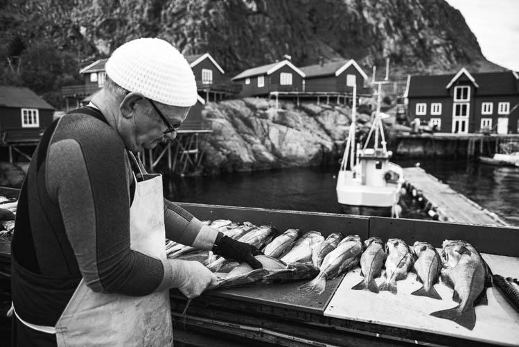 Pêcheur de retour d'une journée en mer dans les Îles Lofoten, Norvège. Format paysage.